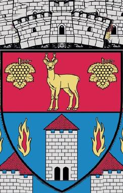 Primaria Comunei Danes – jud. Mures – ROMANIA Logo